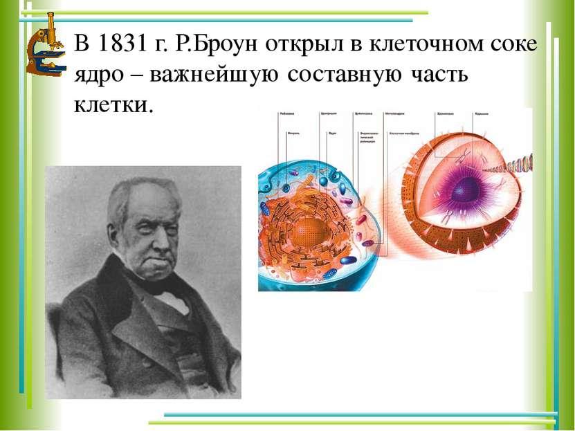 В 1831 г. Р.Броун открыл в клеточном соке ядро – важнейшую составную часть кл...