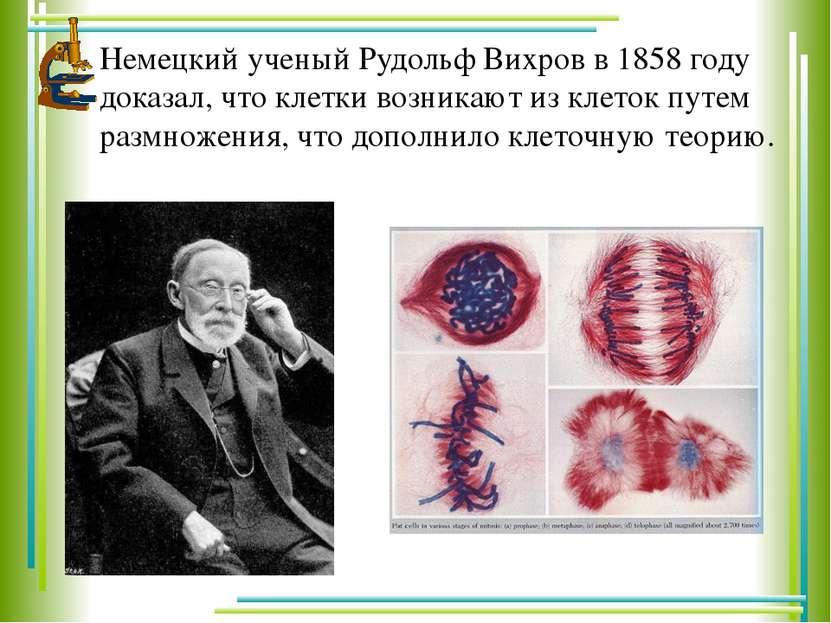 Немецкий ученый Рудольф Вихров в 1858 году доказал, что клетки возникают из к...