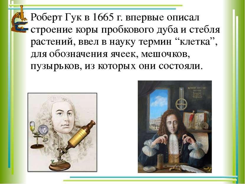 Роберт Гук в 1665 г. впервые описал строение коры пробкового дуба и стебля ра...