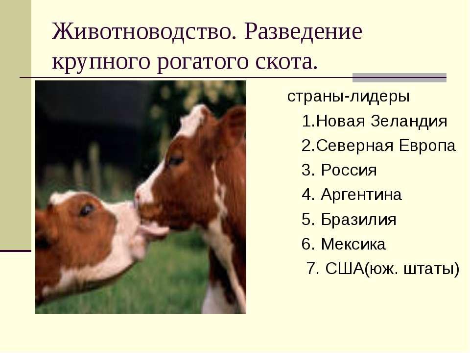 животноводство мира в таблице