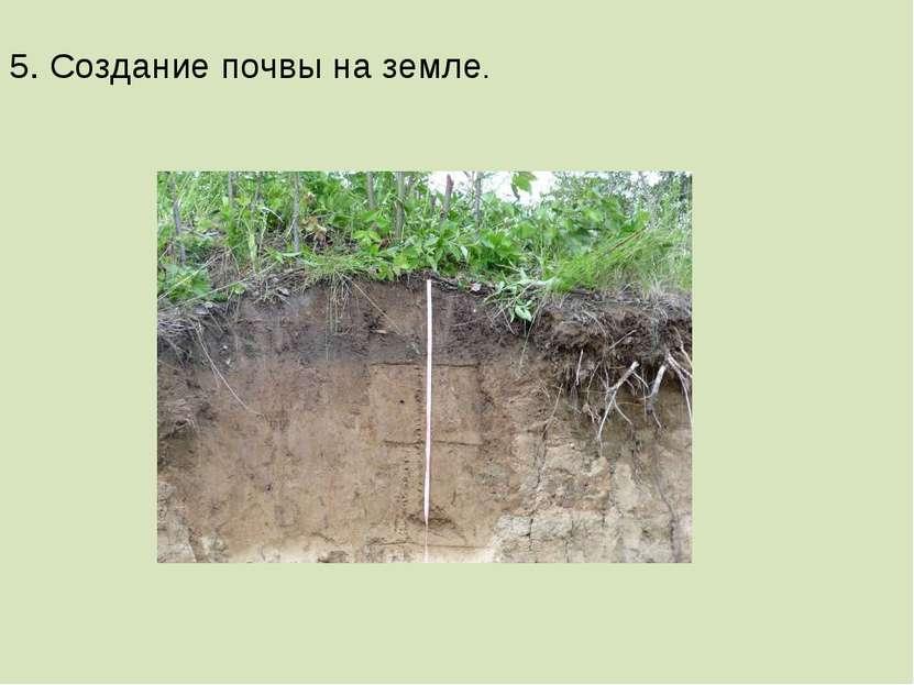 5. Создание почвы на земле.