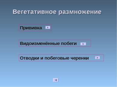Вегетативное размножение Видоизменённые побеги Отводки и побеговые черенки Пр...