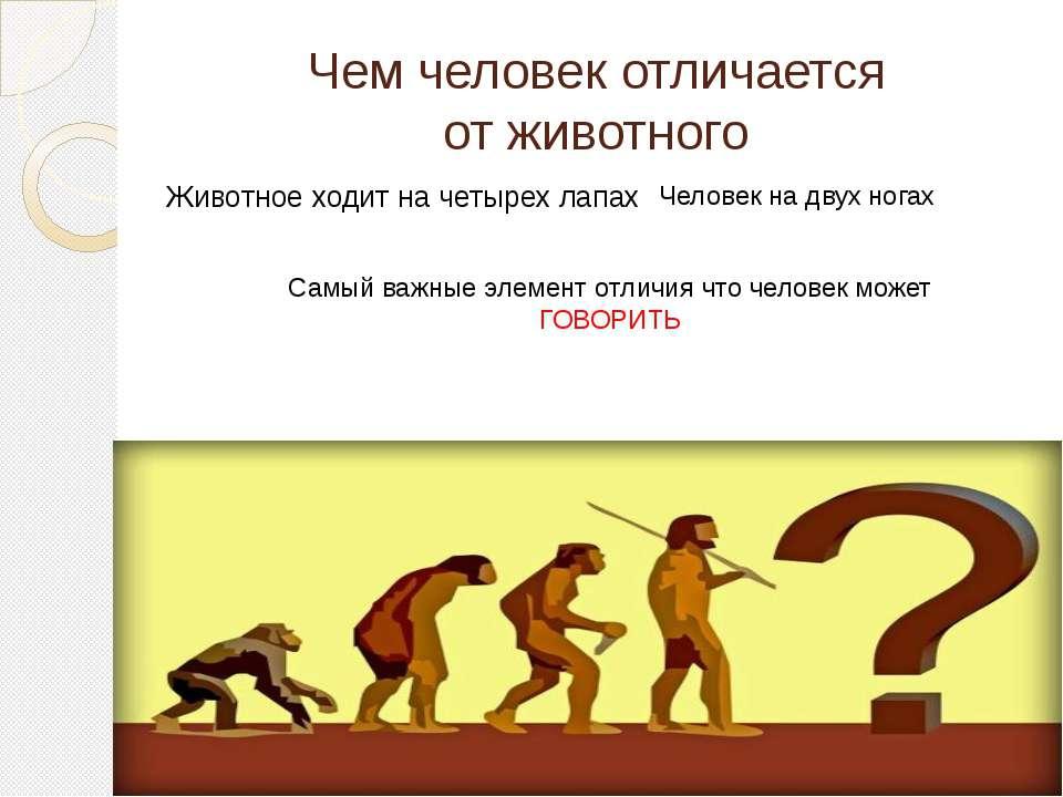 Чем человек отличается от животного Животное ходит на четырех лапах Человек н...