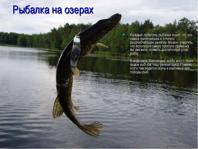 Рыбалка на озерах Каждый любитель рыбалки знает, что это самое приятнейшее и ...