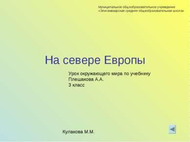 На севере Европы Урок окружающего мира по учебнику Плешакова А.А. 3 класс Кул...