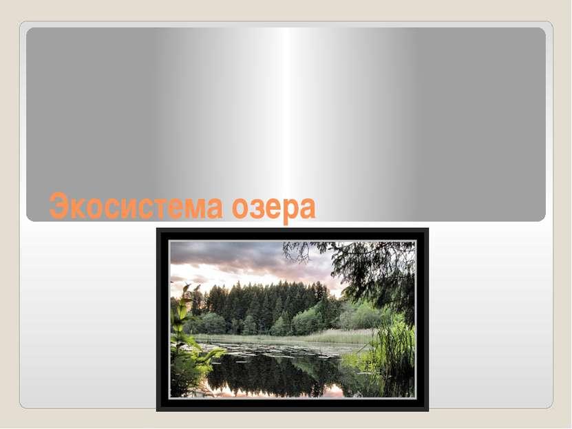 Экосистема озера