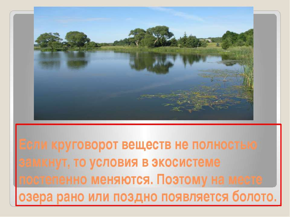 Если круговорот веществ не полностью замкнут, то условия в экосистеме постепе...