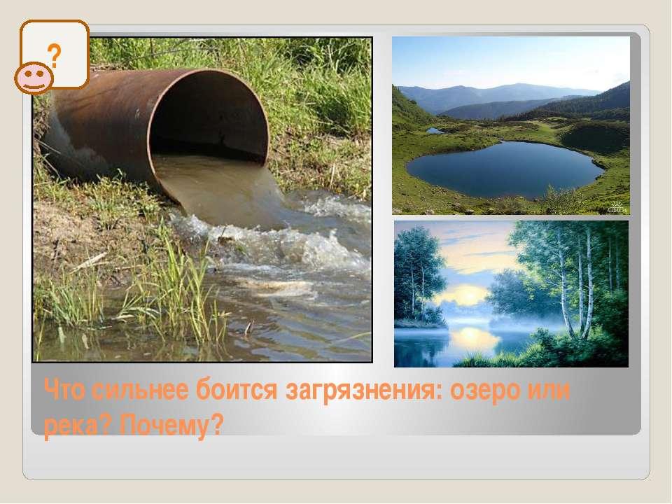 Что сильнее боится загрязнения: озеро или река? Почему? ?