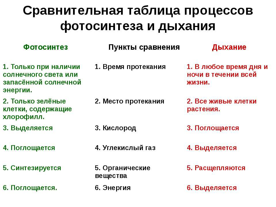 Сравнительная таблица процессов фотосинтеза и дыхания Фотосинтез Пункты сравн...