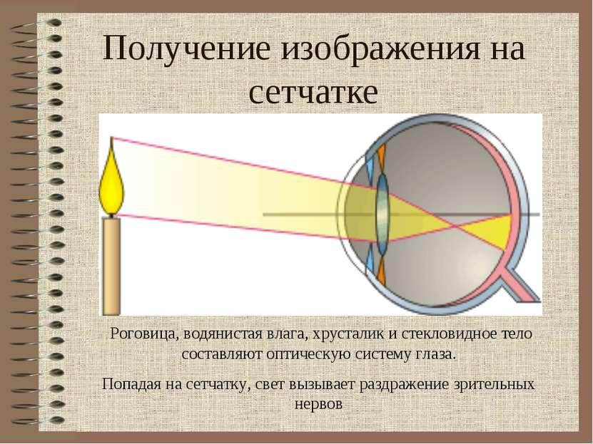 Получение изображения на сетчатке Роговица, водянистая влага, хрусталик и сте...