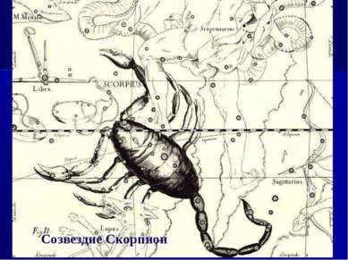Созвездие Скорпион