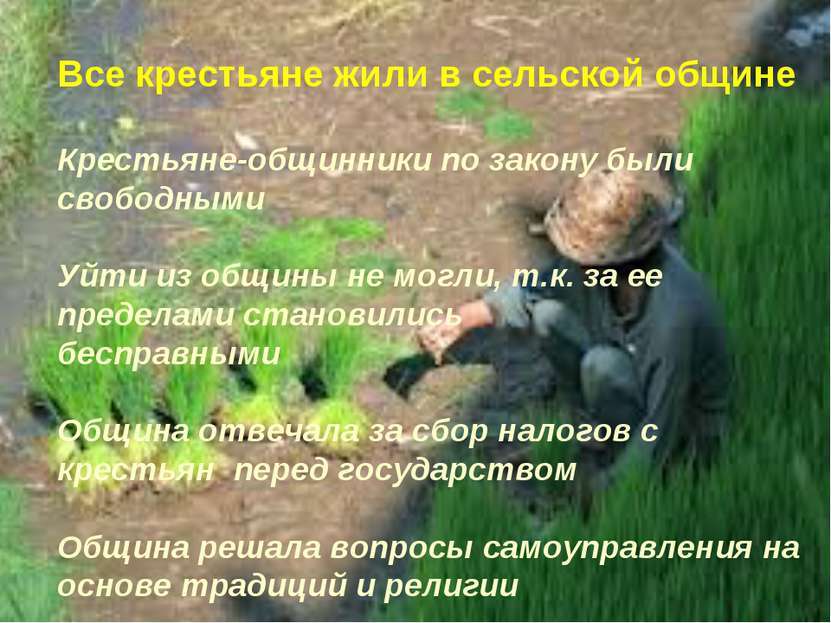 Все крестьяне жили в сельской общине Крестьяне-общинники по закону были свобо...