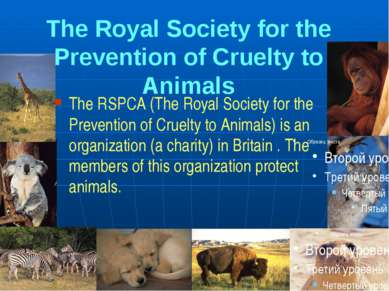 The Royal Society for the Prevention of Cruelty to Animals The RSPCA (The Roy...
