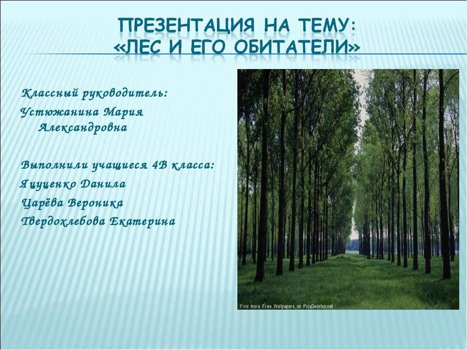 Классный руководитель: Устюжанина Мария Александровна Выполнили учащиеся 4В к...