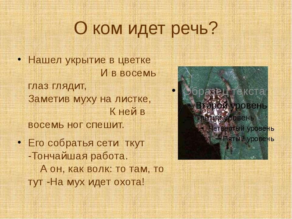 О ком идет речь? Нашел укрытие в цветке И в восемь глаз глядит, Заметив муху ...