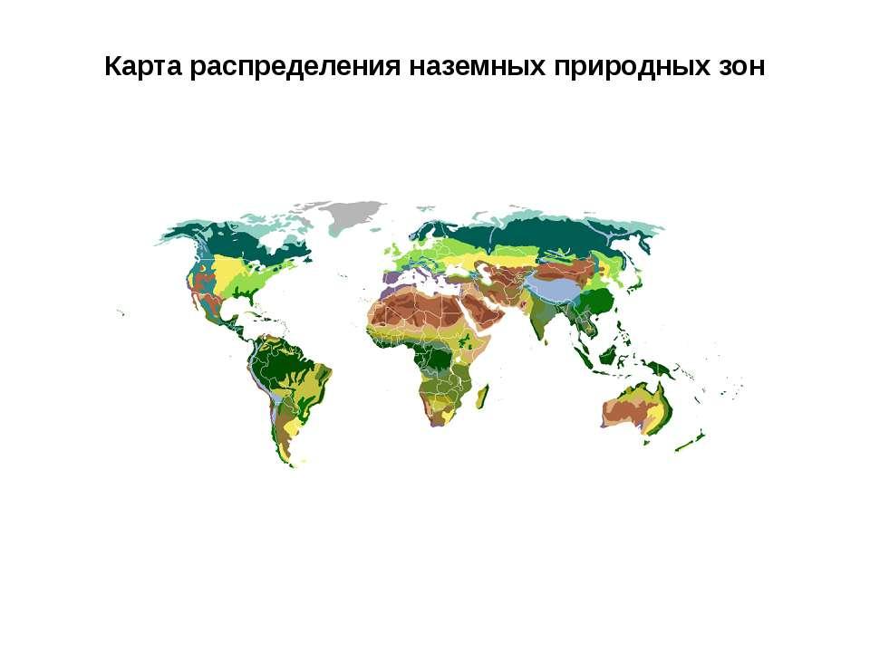 Карта распределения наземных природных зон