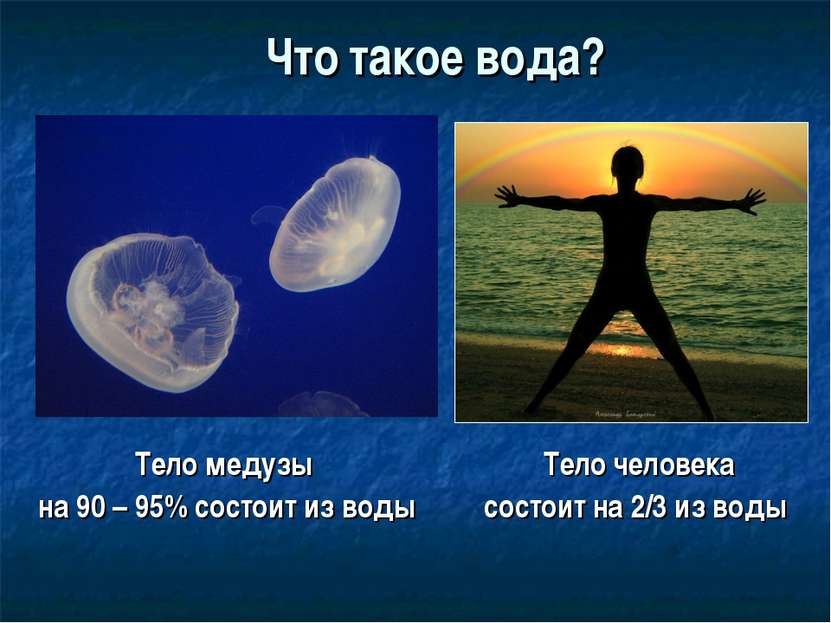 Что такое вода? Тело медузы на 90 – 95% состоит из воды Тело человека состоит...