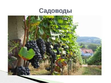 Садоводы