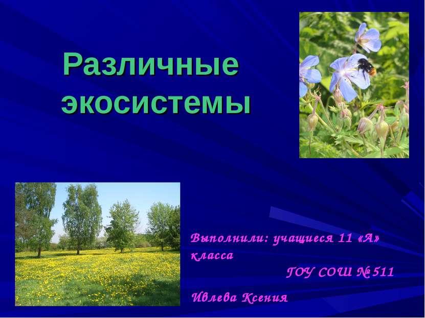 Различные экосистемы Выполнили: учащиеся 11 «А» класса ГОУ СОШ № 511 Ивлева К...