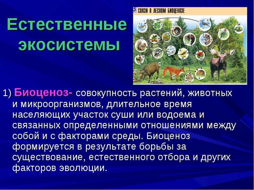 Естественные экосистемы 1) Биоценоз- совокупность растений, животных и микроо...