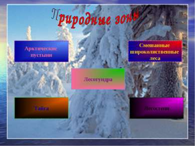 Арктические пустыни Лесотундра Тайга Лесостепи Смешанные широколиственные леса