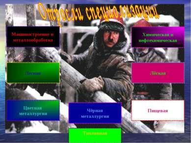 Машиностроение и металлообработка Лесная Цветная металлургия Топливная Чёрная...