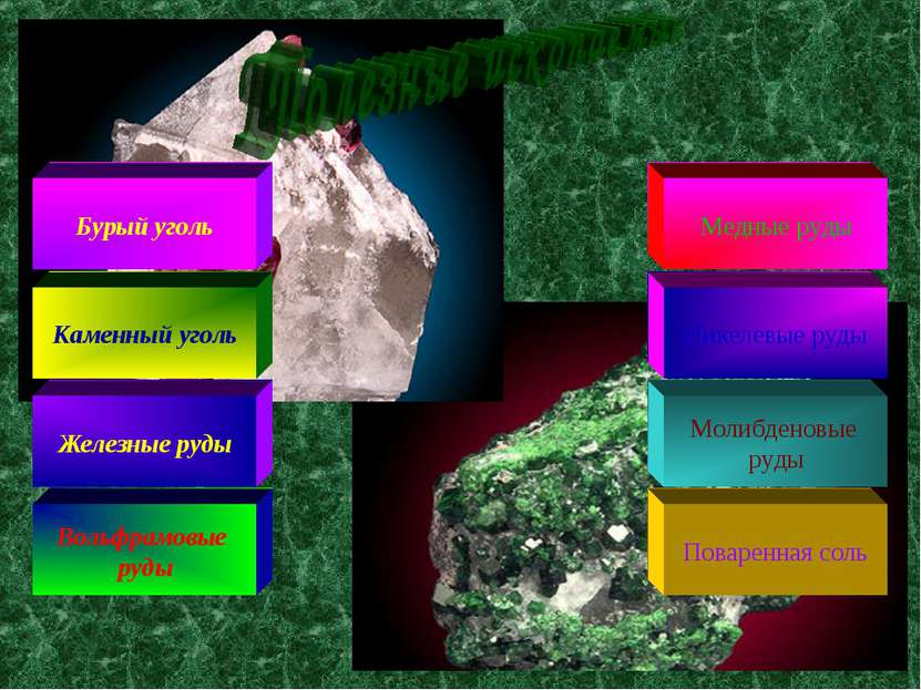 Бурый уголь Каменный уголь Железные руды Вольфрамовые руды Поваренная соль Мо...