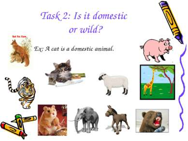 Task 2: Is it domestic or wild? Ex: A cat is a domestic animal.