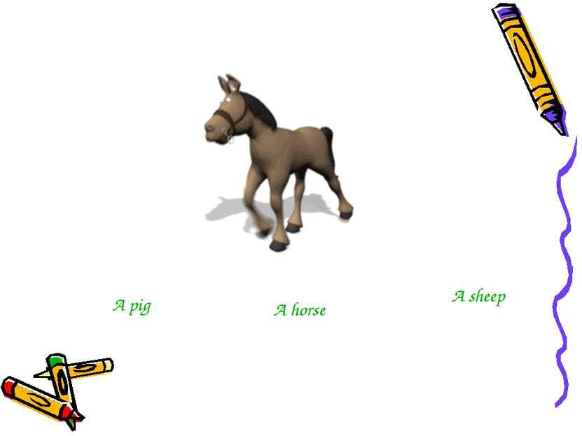A pig A horse A sheep