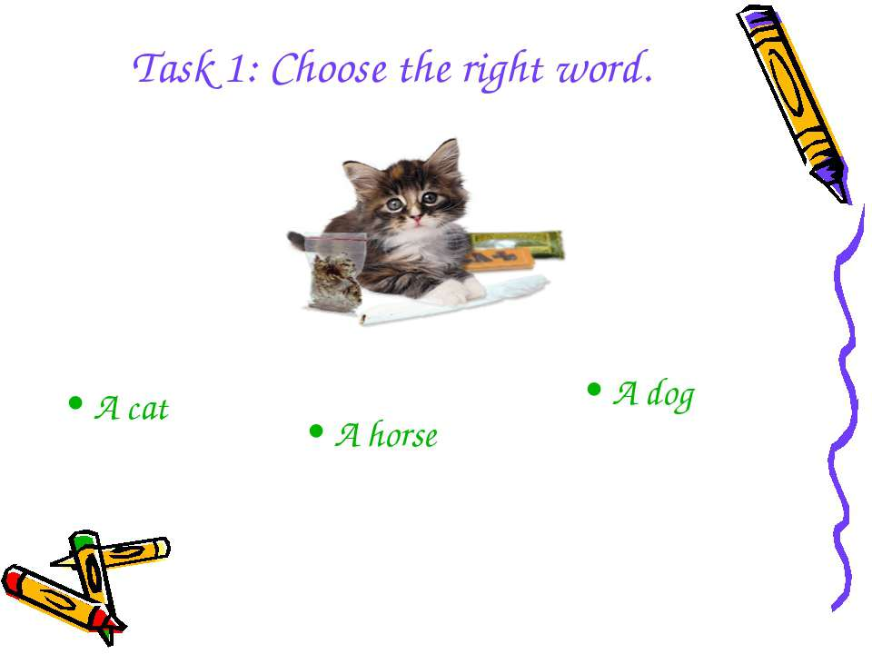 A horse A dog A cat Task 1: Choose the right word.