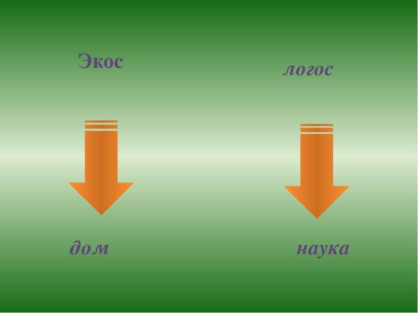 Экос логос дом наука
