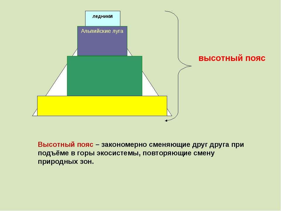 Высотный пояс – закономерно сменяющие друг друга при подъёме в горы экосистем...