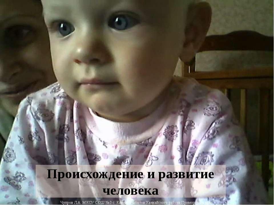 Происхождение и развитие человека Чупров Л.А. МКОУ СОШ №3 с. Камень-Рыболов Х...
