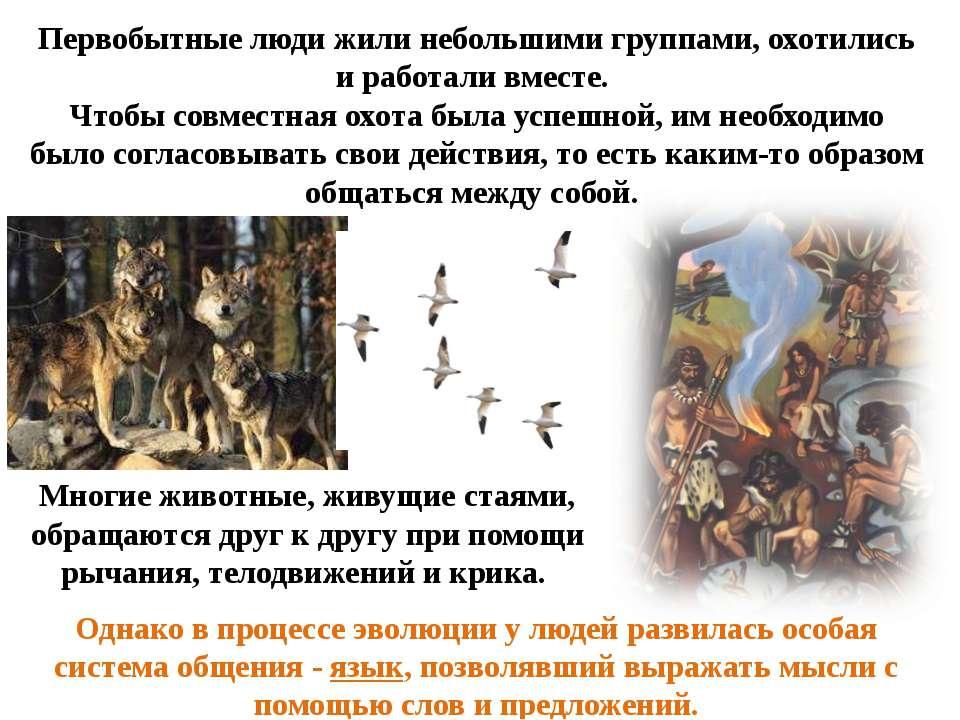 Однако в процессе эволюции у людей развилась особая система общения - язык, п...