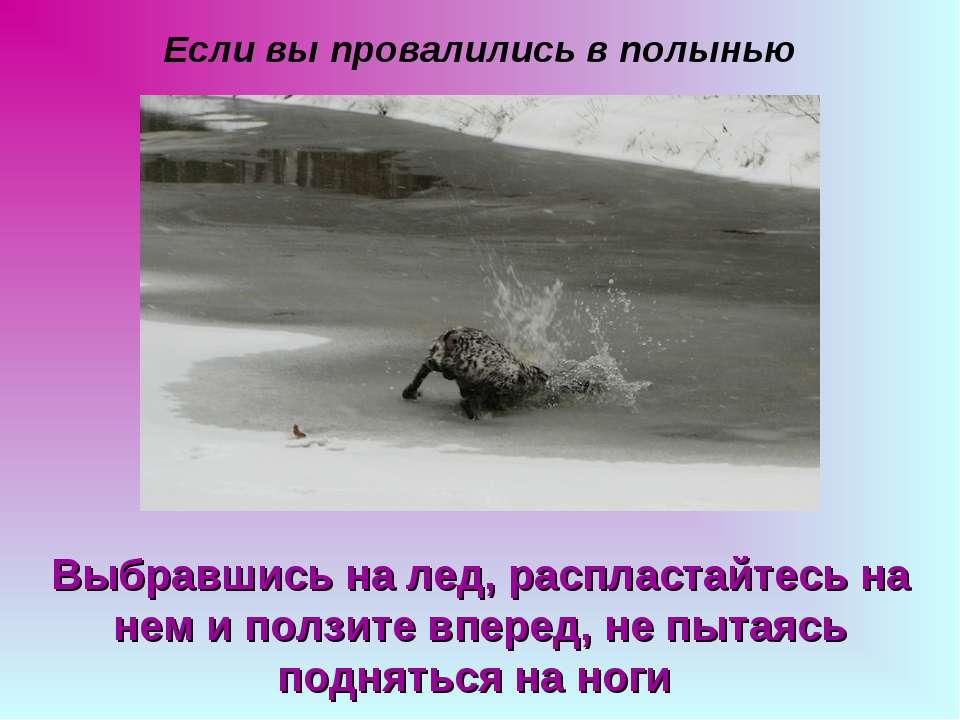 Если вы провалились в полынью Выбравшись на лед, распластайтесь на нем и полз...
