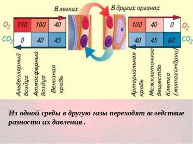 Из одной среды в другую газы переходят вследствие разности их давления .