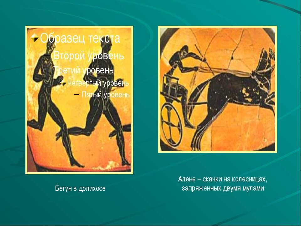 Бегун в долихосе Алене – скачки на колесницах, запряженных двумя мулами