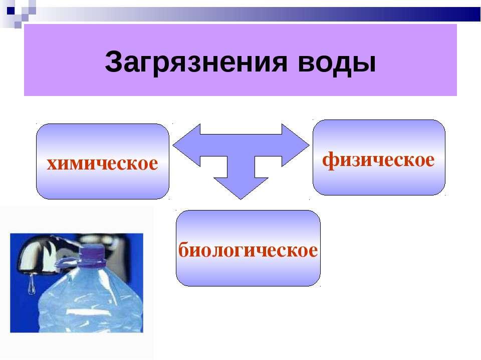 Загрязнения воды химическое биологическое физическое