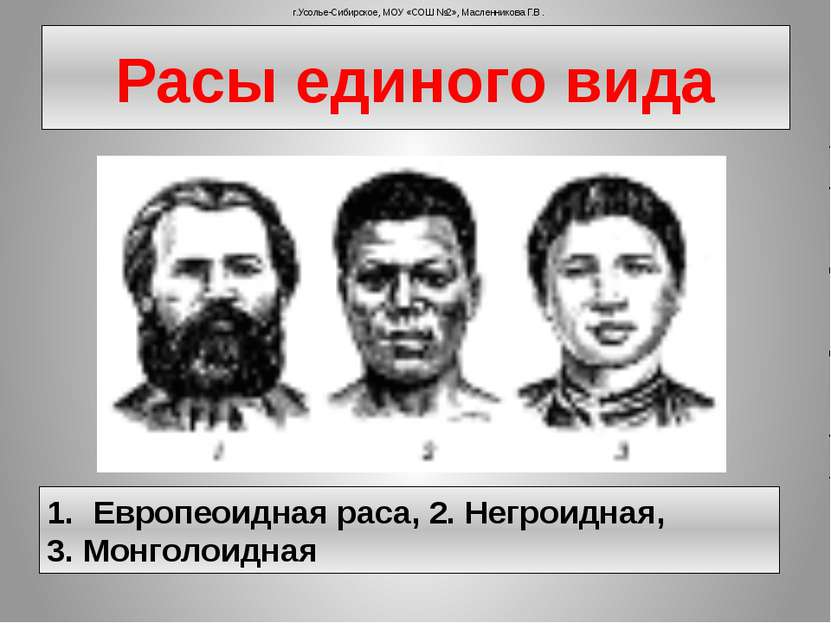 Расы единого вида Европеоидная раса, 2. Негроидная, 3. Монголоидная г.Усолье-...