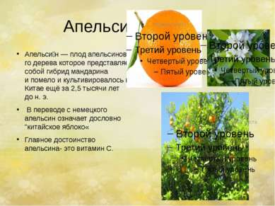 Апельсин. Апельси н—плодапельсинового деревакоторое представляет собойги...