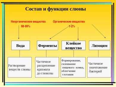 Состав и функции слюны Неорганические вещества Органические вещества 98-99% 1...