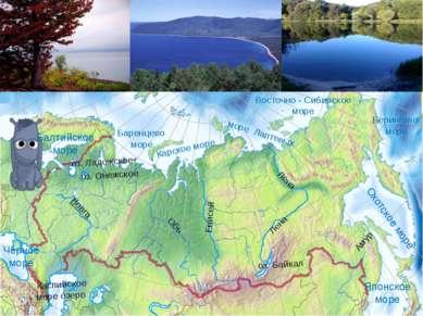 Чёрное море Балтийское море Японское море Охотское море Берингово море Баренц...