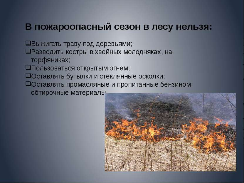 В пожароопасный сезон в лесу нельзя: Выжигать траву под деревьями; Разводить ...