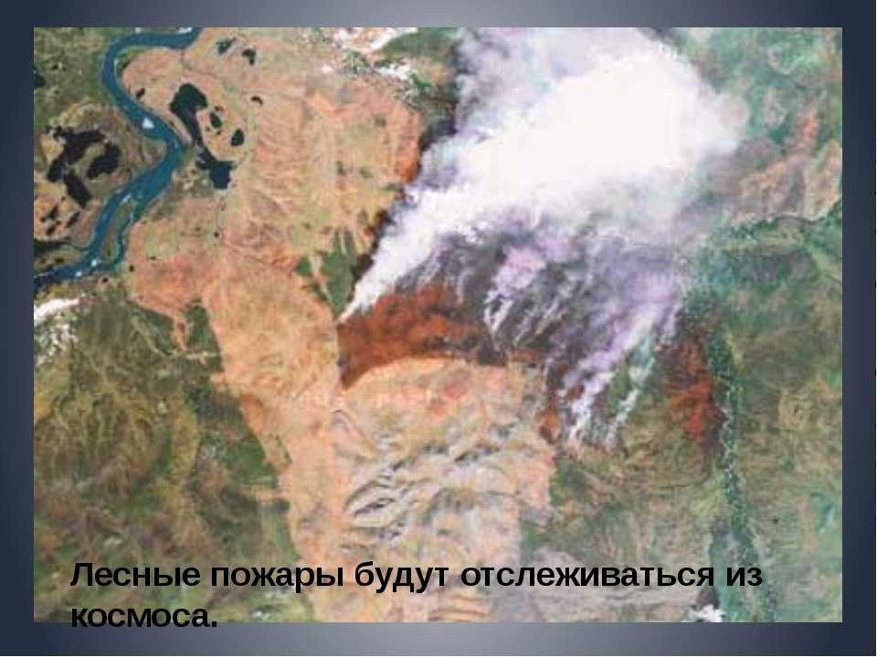 Лесные пожары будут отслеживаться из космоса.
