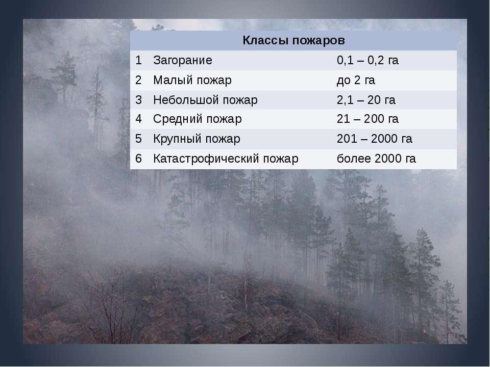 Классы пожаров 1 Загорание 0,1– 0,2 га 2 Малый пожар до 2 га 3 Небольшой пожа...