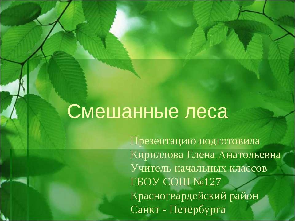 Смешанные леса Презентацию подготовила Кириллова Елена Анатольевна Учитель на...