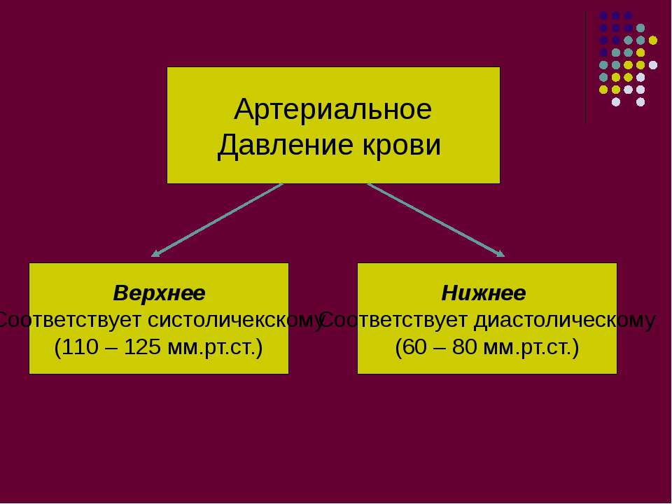 Артериальное Давление крови Верхнее Соответствует систоличекскому (110 – 125 ...