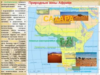 Природные зоны Африки В экваториальном климате распространены влажные экватор...