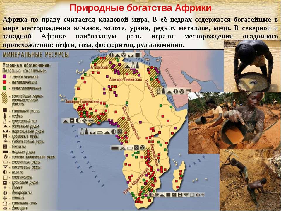 Природные богатства Африки Африка по праву считается кладовой мира. В её недр...