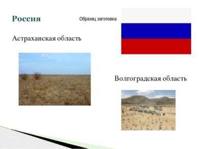 Астраханская область Волгоградская область